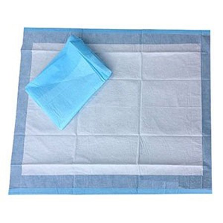 Underpad Select® 22 X 30 Inch Disposable Polymer Light Absorbency