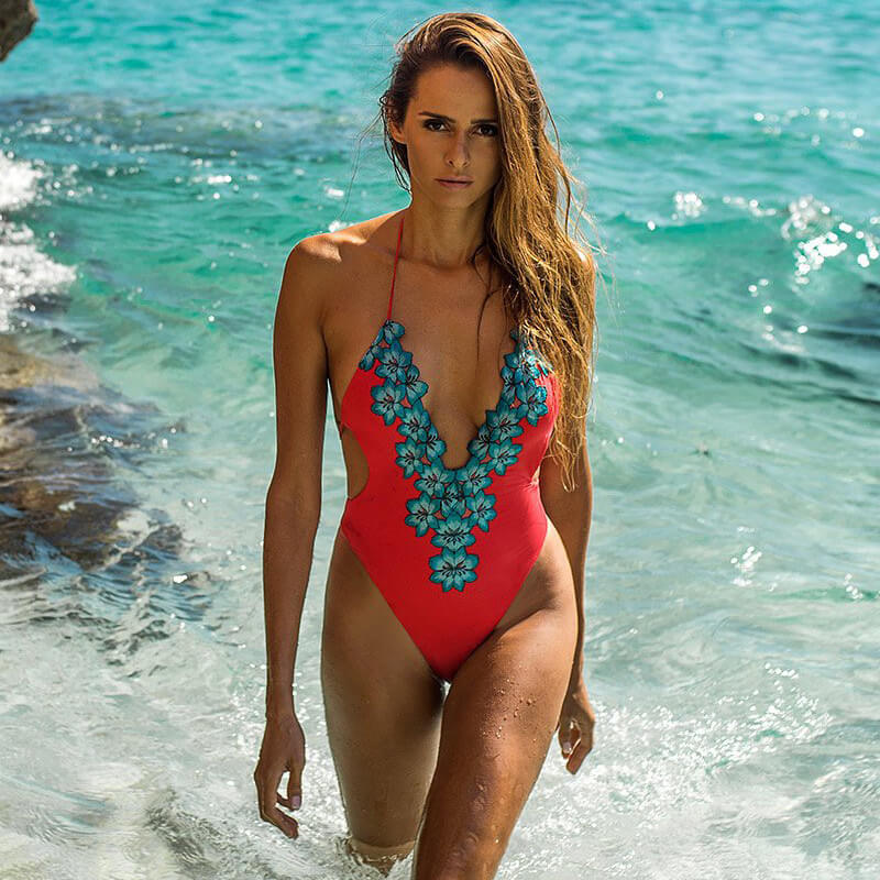 Embroidered Floral Deep V Low Back Brazilian One Piece Swimsuit