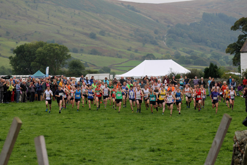 Image for article The wasdale Show and Fell Race