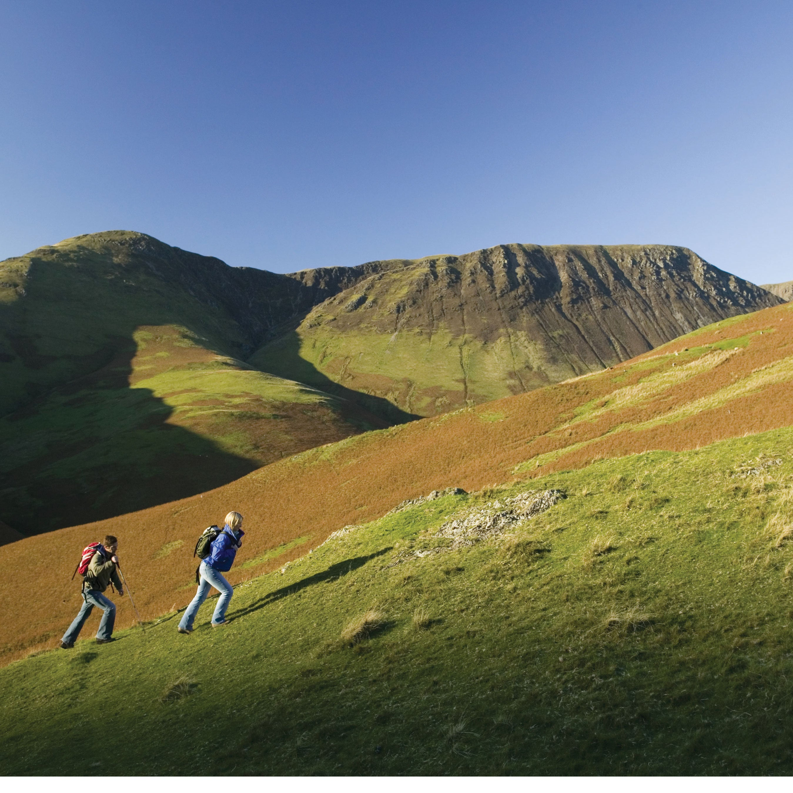 Image for article Walk of the Month - The Newlands Round