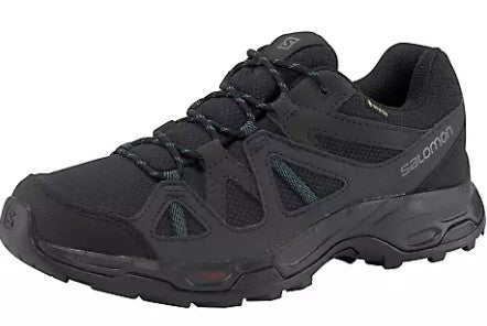Men's Salomon Rhossili GTX Shoe - Black