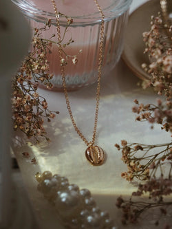 Necklace | Shell