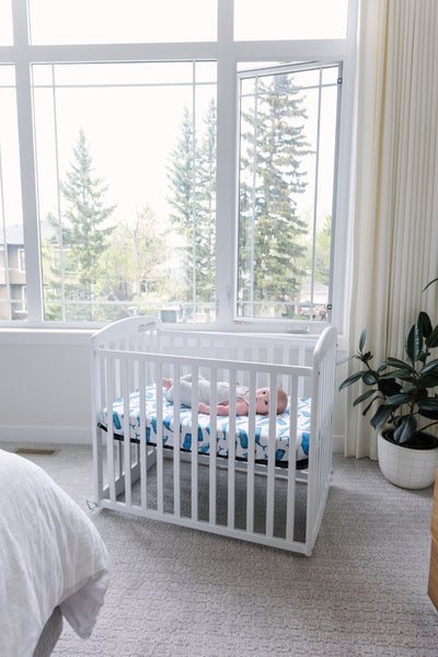 Modern Whales Baby Bedding