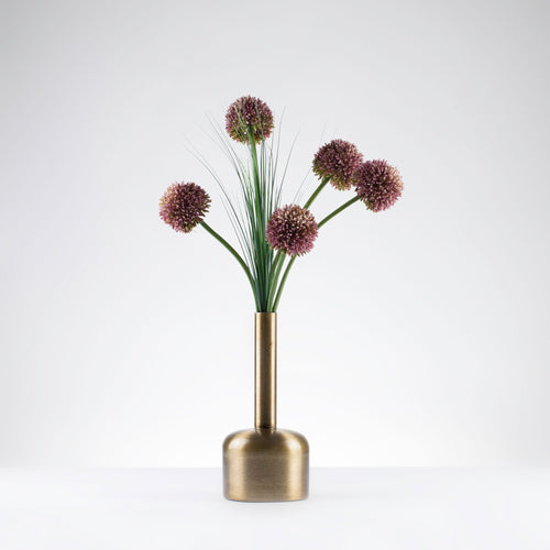 Bottleneck Alliums  Item# 803