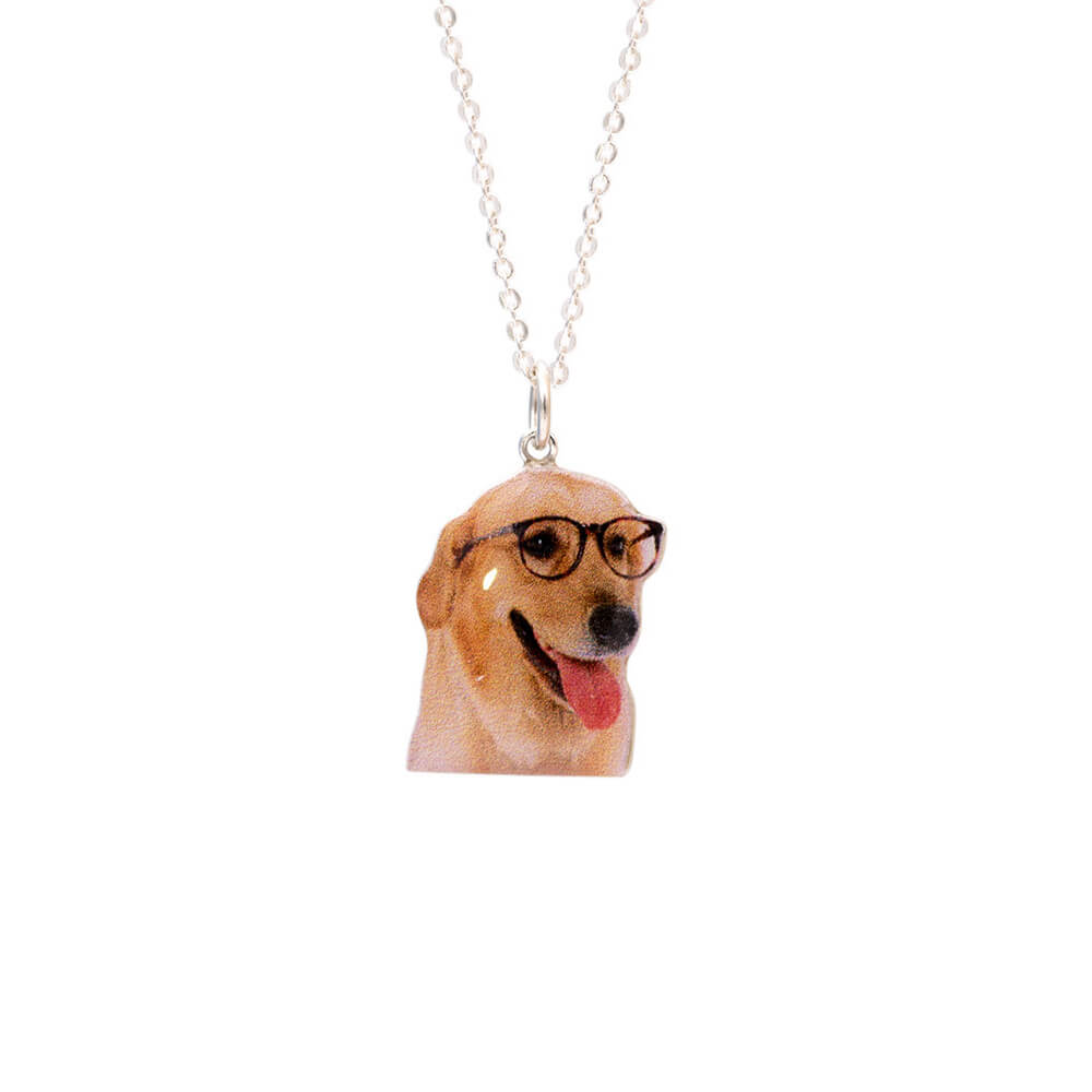 Custom Pet Portrait Necklace 925 Silver(Colourful) - Pet Art Pet Memorial Ideas