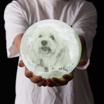 Custom Pet 3D Printed Moon Night Light - Pet Memorial Ideas