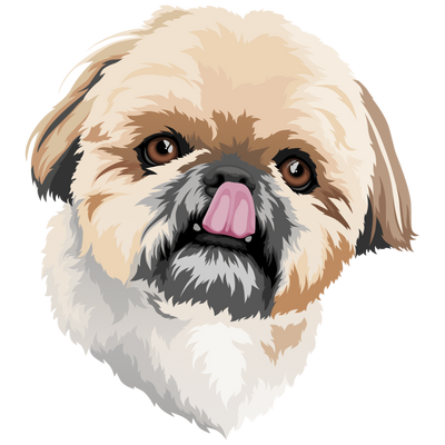 Custom Pet Digital Art File - Pet Art Pet Memorial Ideas