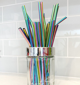 Stainless Steel Straw - Rainbow