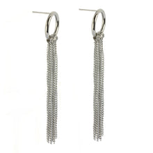 Load image into Gallery viewer, ESS426 STAINLESS STEEL EARRING