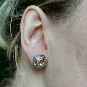 ESS668 STAINLESS STEEL EARRING