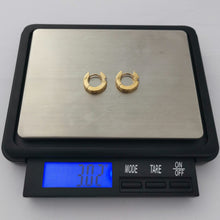 Load image into Gallery viewer, GESS205 STAINLESS STEEL EARRING