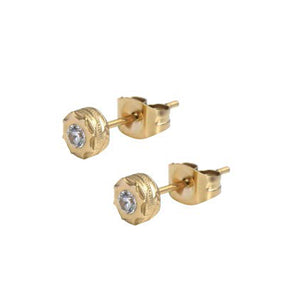 GESS136 STAINLESS STEEL EARRING