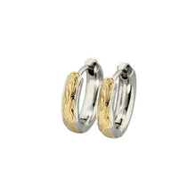 Load image into Gallery viewer, GESS154 STAINLESS STEEL EARRING