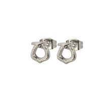 Load image into Gallery viewer, GESS167 STAINLESS STEEL EARRING