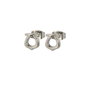 GESS167 STAINLESS STEEL EARRING