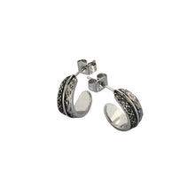 Load image into Gallery viewer, GESS169 STAINLESS STEEL EARRING