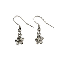 Load image into Gallery viewer, GESS170 Stainless Steel Earring