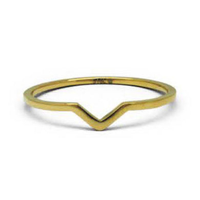 INR182C STAINLESS STEEL RING