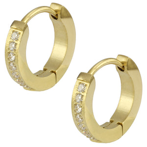 MESS27 STAINLESS STEEL EARRING WITH CZ