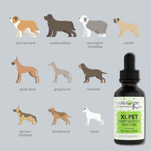 Load image into Gallery viewer, Canna Hemp - Paws Pet Tincture - XL - 60mL