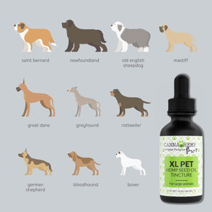 Canna Hemp - Paws Pet Tincture - XL - 60mL