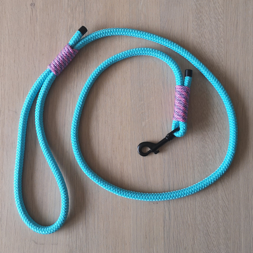by Charlotte - Paracord Leash - Handmade
