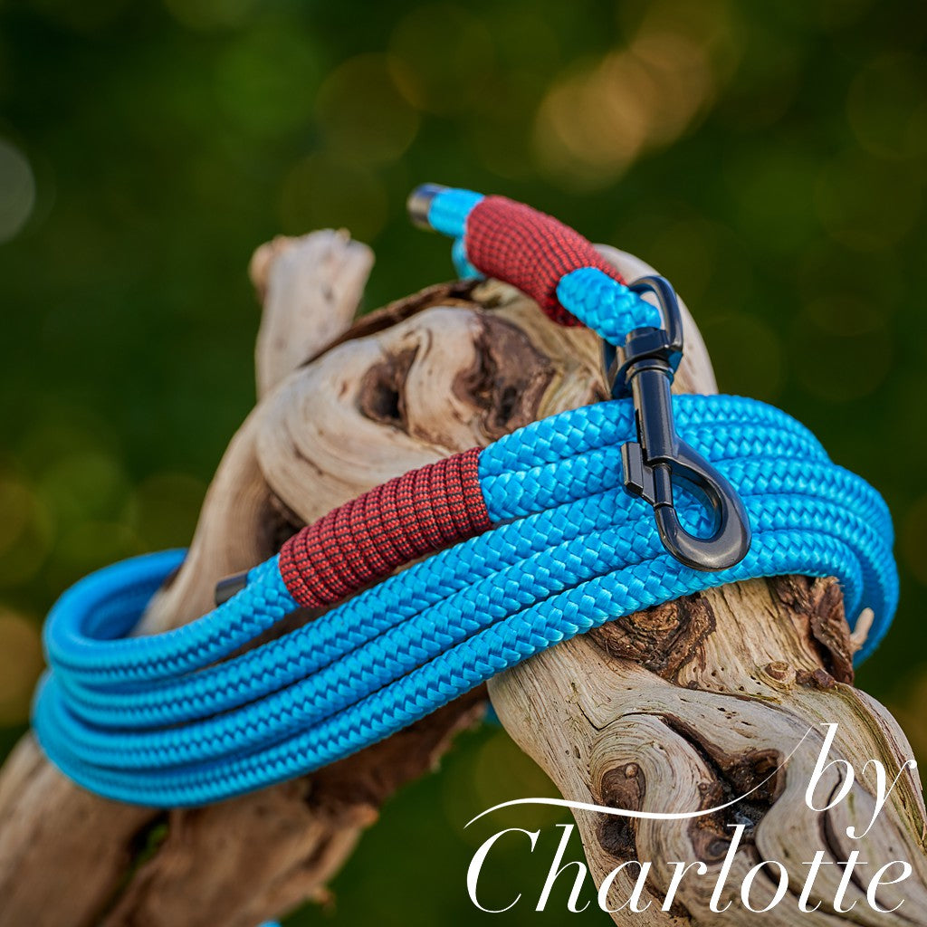 by Charlotte Long paracord leashes - Handmade 3,5 m