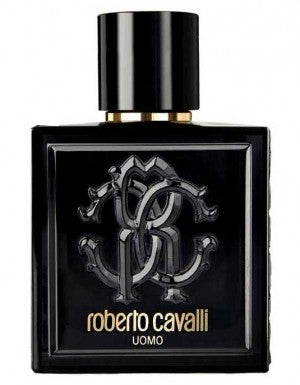 Just Cavalli Uomo 100ml EDT