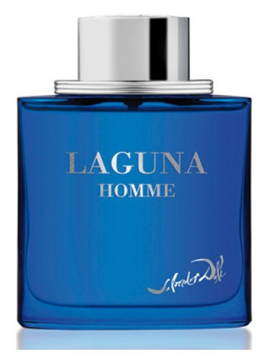 Salvador Dali Laguna Homme 100ml EDT