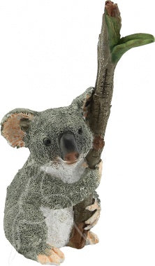 Koala Hugging Branch