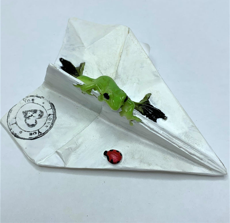 Green Tree Frog on Paper Plane