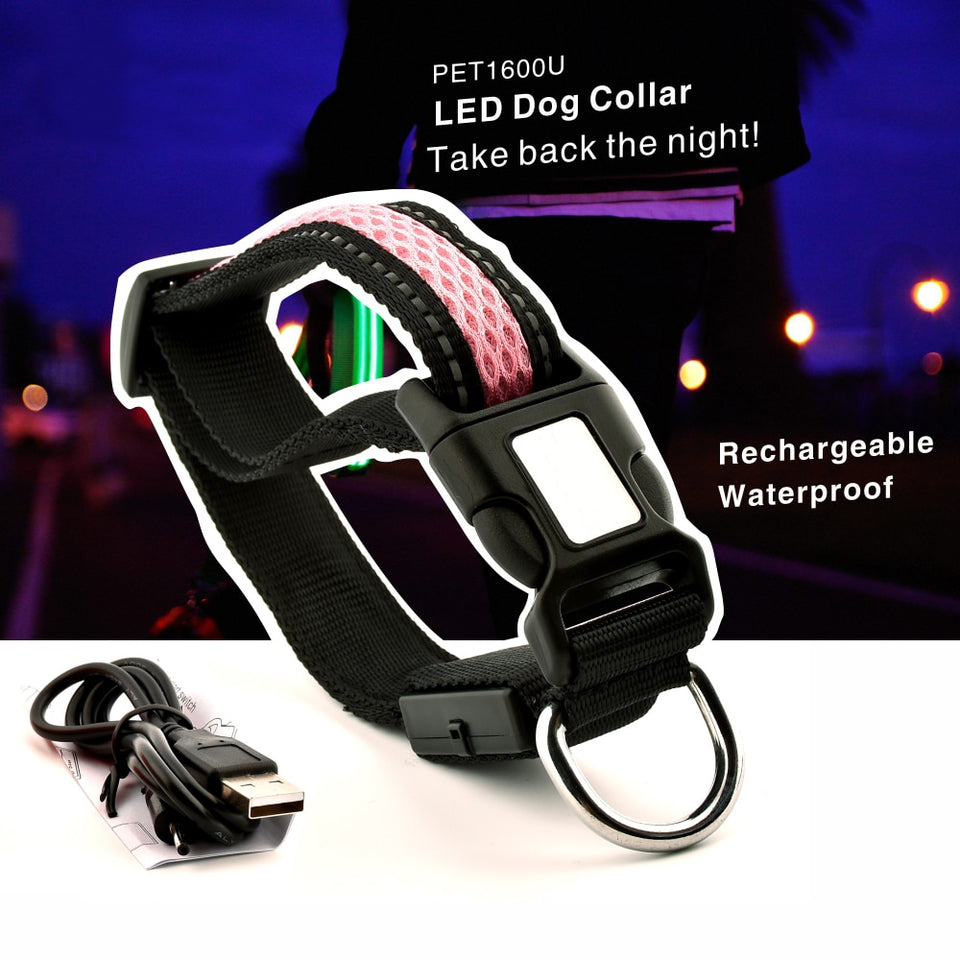 Pet Night Safety LED