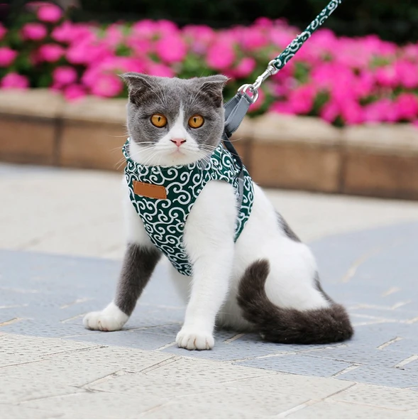 THEPARADIGM™ Cat Vest Harness And Leash (MORE THAN 60% OFF TODAY!)