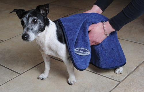 WB Dog Towel