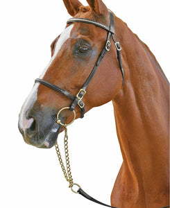 Collegiate Clincher Browband  In Hand Bridle