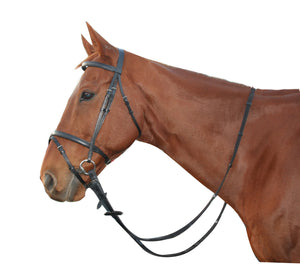 Saddlecraft Hanovarian Bridle