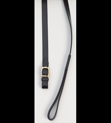 Aintree In Hand Leather 160cm Lead Brass