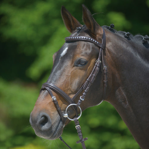 STAR  BRIDLE CLINCHER