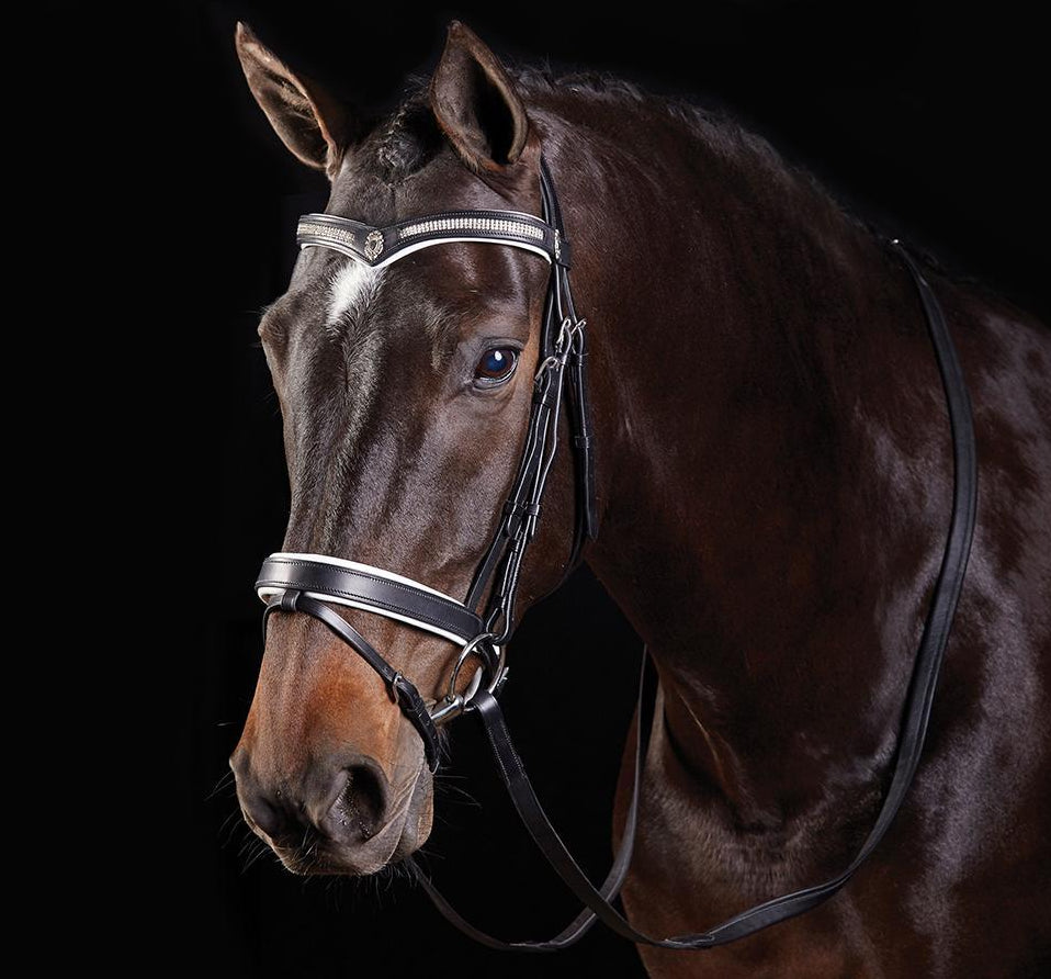 COLLEGIATE V SHAPED DIAMANTE BRIDLE
