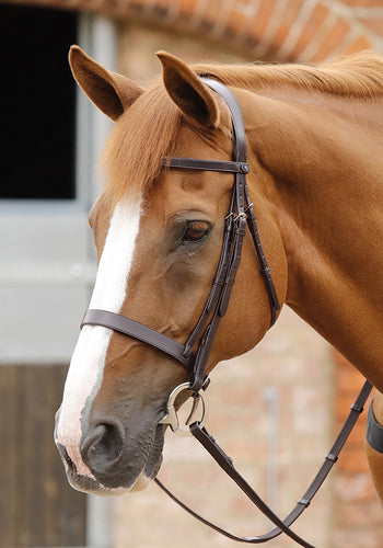 Premier Primo Hunter Bridle