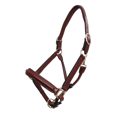 Platinum Padded Leather Show Halter