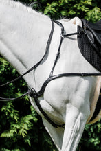 Load image into Gallery viewer, Cavallino Ultimate 5 Point Breastplate
