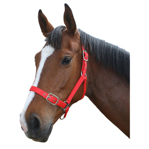 FLAIR  NYLON HALTER