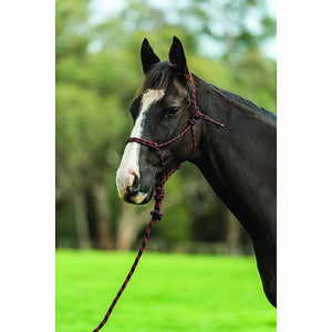Two Tone Rope Headcollar and Lead Set