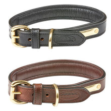 Load image into Gallery viewer, WB Padded Leather Dog Collar