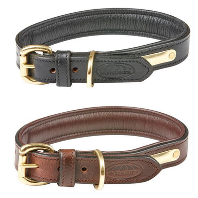 WB Padded Leather Dog Collar
