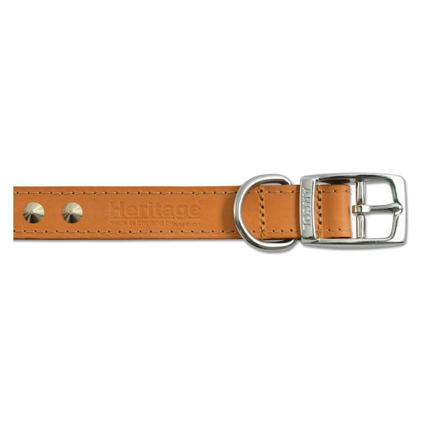 Ancol Leather Collar Studded Tan, 28-36cm size 3