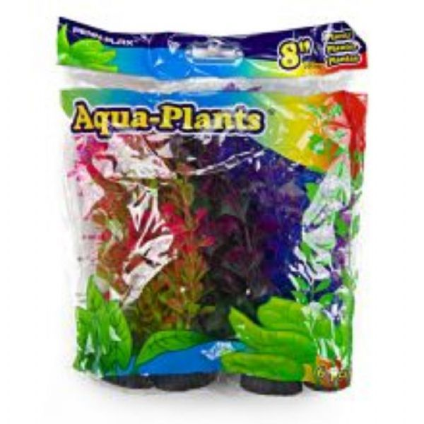 "Aqua Plants Coloured Plant 6pk 8"" Medium"