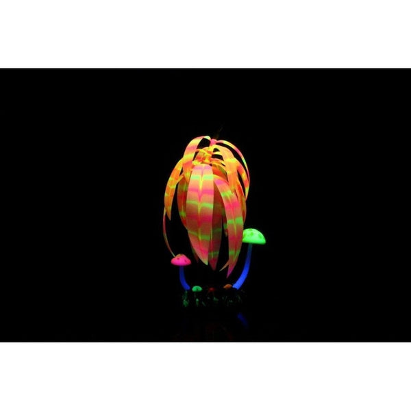 Aquarium Lumo Rose Stripe 19.5cm