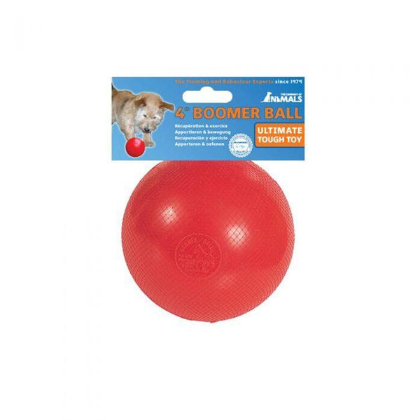 "Boomer Ball 4"" Dog Puppy Toy"